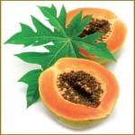 Consigli su dove Acquistare la Papaya Fermentata