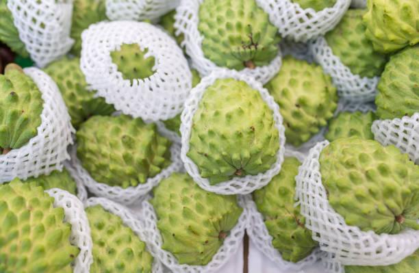 Graviola: frutti della pianta Annona muricata